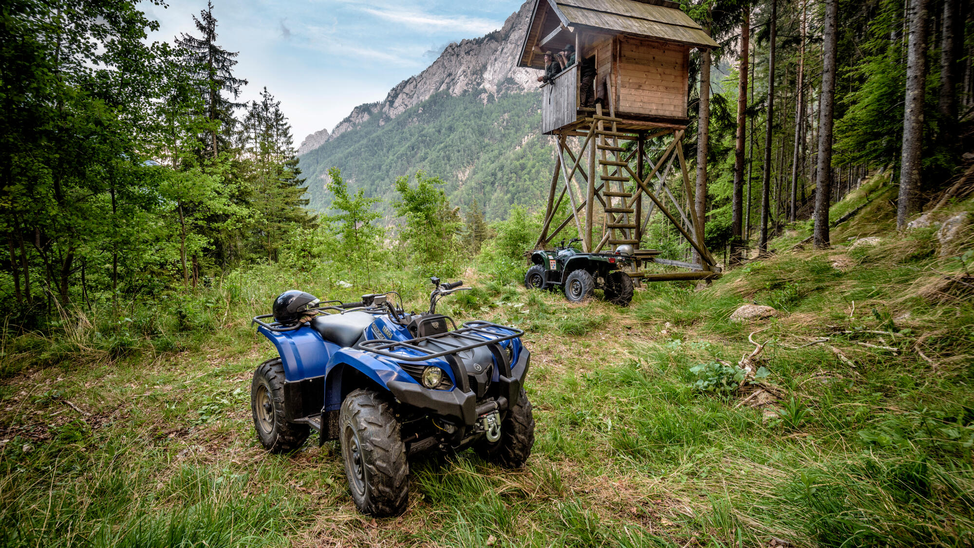 Yamaha 450 Atv >> Grizzly 450 EPS - atv - Yamaha Motor